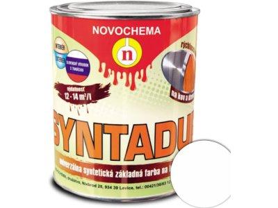 Syntadur - 0100 biela 0,9kg - základná syntetická farba